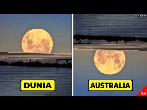 JADI PENGEN PINDAH KE AUSTRALIA..!! Lihat, Inilah Bukti Kenapa Australia itu Tempat yang Istimewa