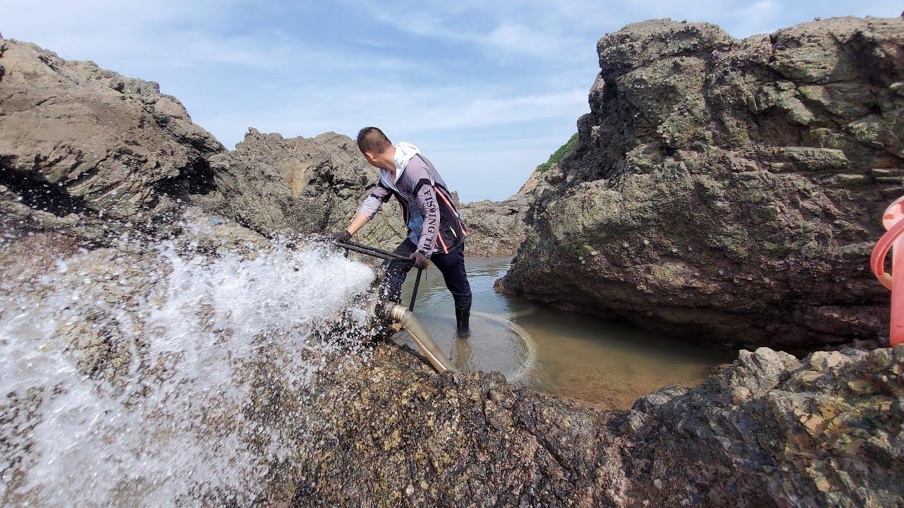 小明意外发现水坑中两种身价悬殊的石斑鱼,同样是石斑价格相差十倍