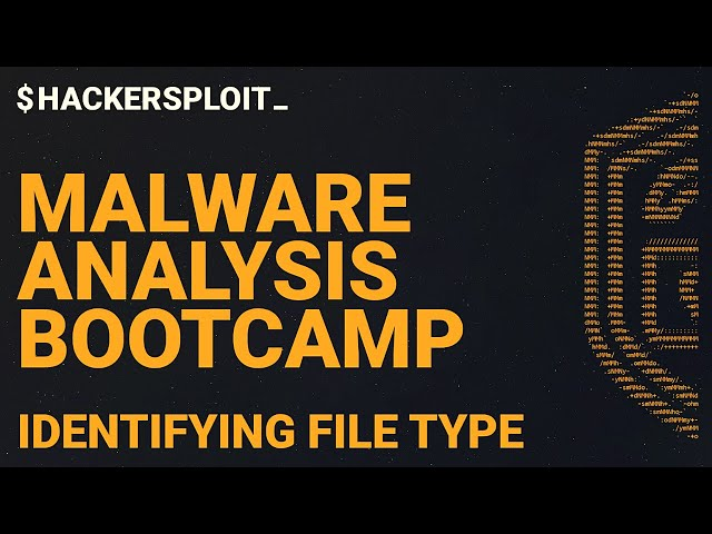 Malware Analysis Bootcamp - File Type Identification