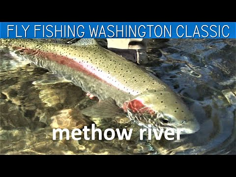 Fly Fishing Washington State FWL Classic Methow River Steelhead Middle