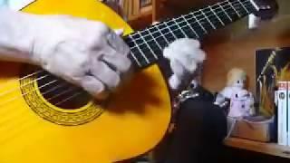 Recordando a Antonio Bribiesca Guitarra mexicana