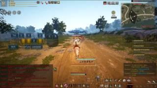Black Desert Instant Acceleration skilling