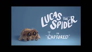 Lucas the spider (all videos)
