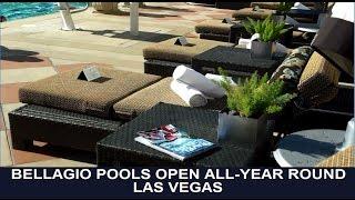 Best Buffet Las Vegas