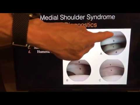 Canine Medial Shoulder Syndrome: With Drs. Canapp and Susan Garrett