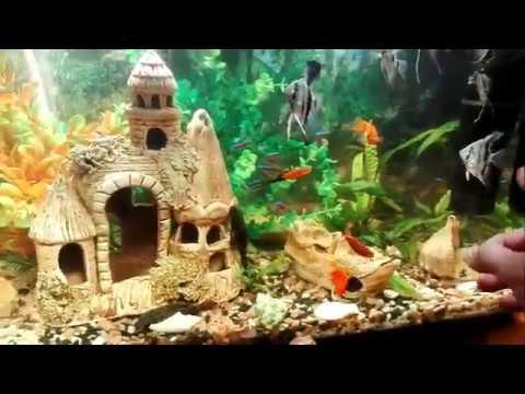 Бесшумный  аквариум в  спальне