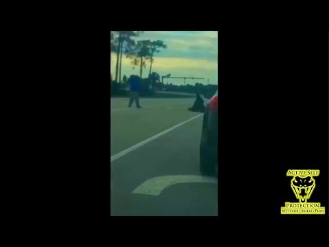 Good Samaritan Saves Officer Being Attacked on Florida Turnpike | Active Self Protection