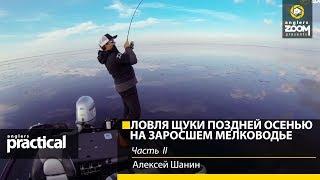 Ловля щуки воблерами поздней осенью на заросшем мелководье. Алексей Шанин. Часть 2