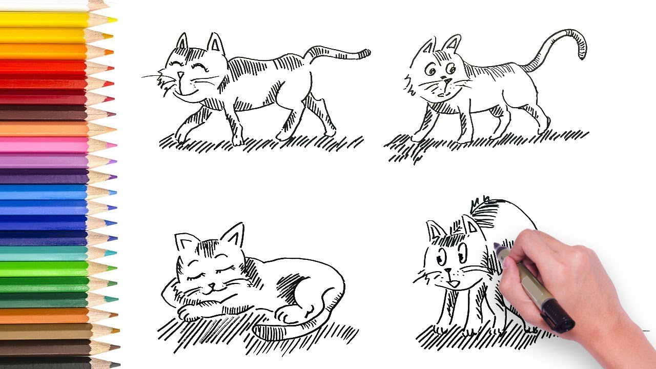 4 Simple Drawing Cat How To Draw Cat Line Drawing Manga Drawing Tutorial