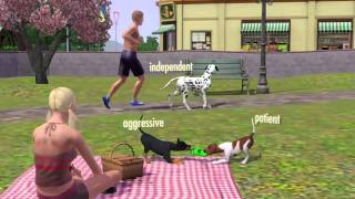 sims 3 pets keygen download