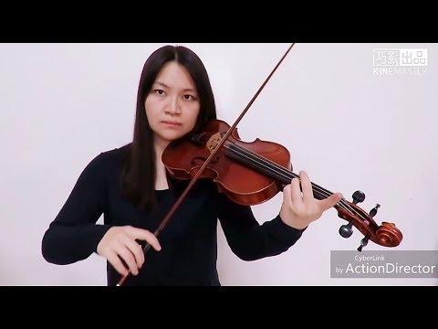 Camila Cabello - Consequences(Violin Cover)