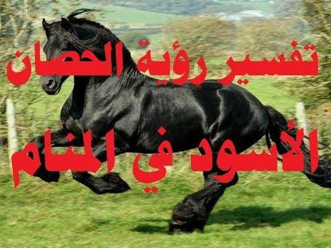 إقامة سيجار استقلال تفسير حلم حصان اسود Parkskeepers Com