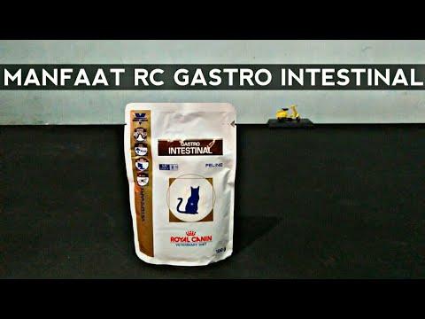 manfaat-royal-canin-gastro-intestinal