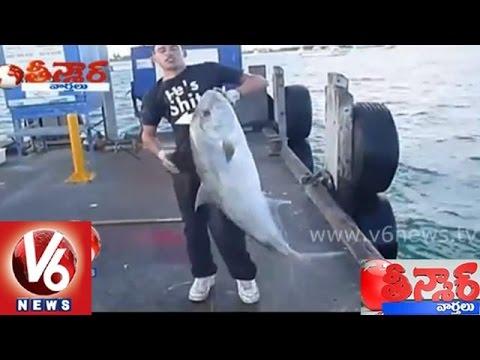 Download Youtube: Mallanna Funny Satire On A Fisherman    Teenmaar News
