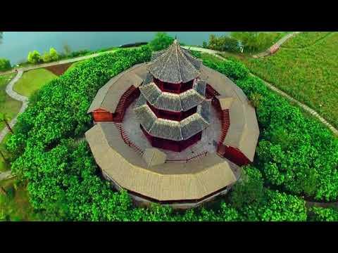 Chongqing in Bird's Eye View (鳥瞰重慶)