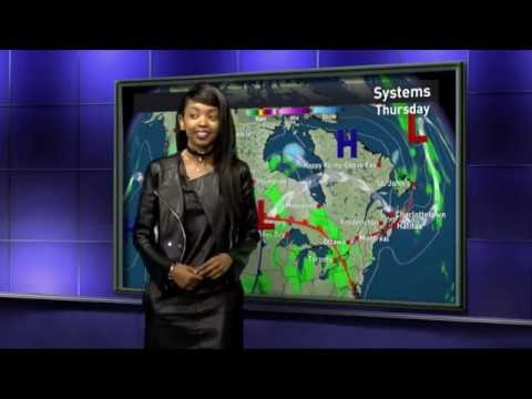 Stacy Weather Report