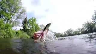 Jerkbait-Fischen der Film ( inkl.Live-Biss & Unterwasseraufnahmen)
