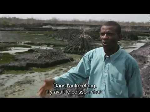 hqdefault - Pétrole : L'Afrique