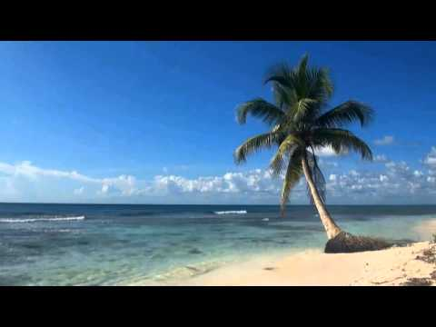 1 Hour of relaxing  Beach, Palm, white Sand and (erotic) Music
