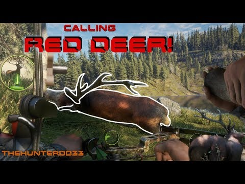CALL OF THE WILD Calling Red Deer!!  THEHUNTER 2017
