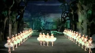 Tchaikovsky | Swan Lake (Great Performance)