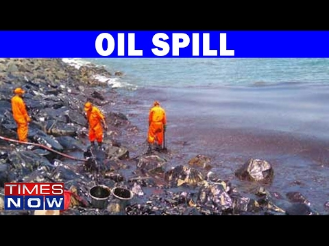 Chennai Oil Spill - Severe Damage To Marine Life