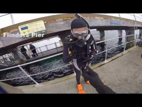 Flinders Pier Great Victorian Fish Count Dive 2016