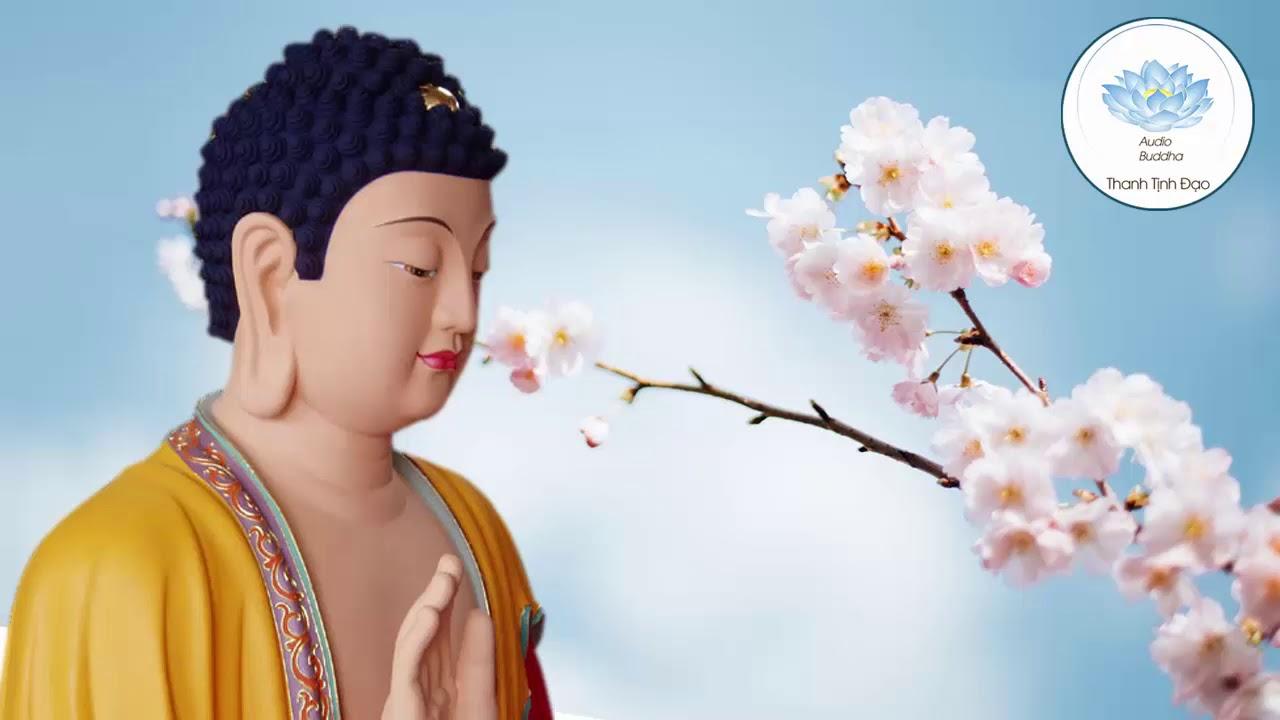Tai Hại Khẩu Nghiệp Và Quả Báo Của Việc Nói Lời Bất Thiện Ý