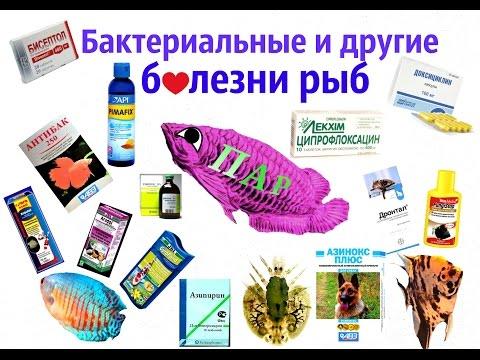 Болезни аквариумных рыбок фото, диагностика профилактика