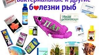 Бактериальные и другие болезни аквариумных  рыб.