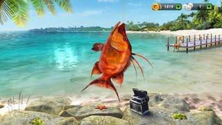 Fishing clash gameplay