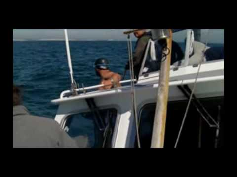 SEA6 English Channel Relay Swim