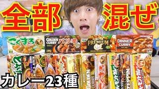 【検証】業務用スーパーのカレー全種類混ぜた結果…!!