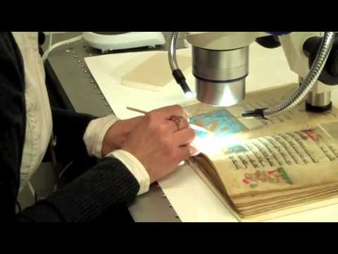 Rare Book Conservator - Career Spotlight