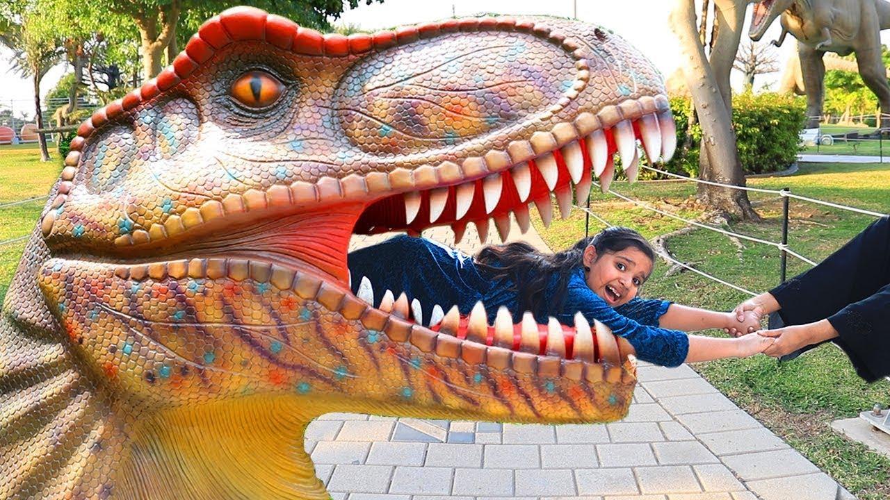 ! Shfa and Dinosaur Museum