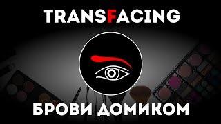 Брови домиком и драматизация | Трансфейсинг физиогномика | Леонид Золин - 2017