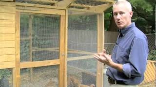 Backyard Chicken Coop Revealed