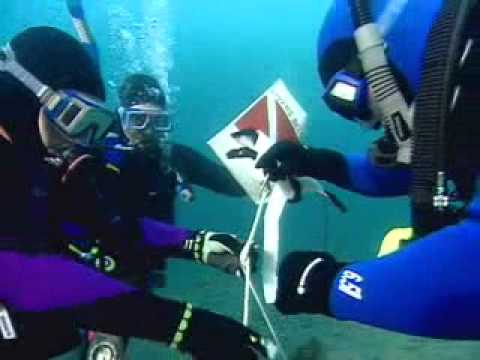 Become a PADI Rescue Diver