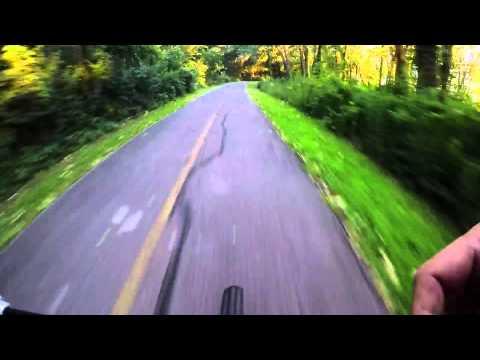 Busse Woods- full bike trail loop