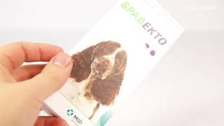 Таблетка Bravecto для собак массой от 10 до 20 кг