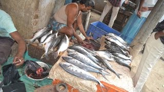 Street FOOD - Fish Cutting India - Fish Market India