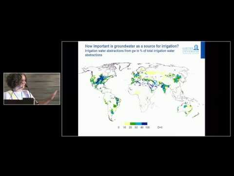 Petra Döll - The Irrigation-Groundwater Nexus at the Global Scale