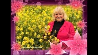 Foto e slideshow di Elisabetta Errani Emaldi - I colori della primavera - 2012