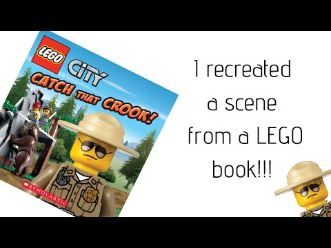 I recreated a scene from a LEGO book