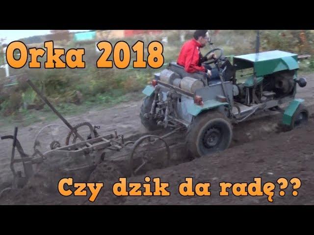 Orka 2018 - Czy Dzik da rad??? - Dzik Rumcajs Ci?gnik SAM Fiat 126p