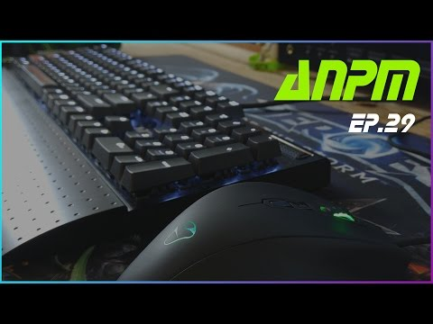 ANPM | ep.29 | LINUX, DELL, G2A & BATTLE.NET