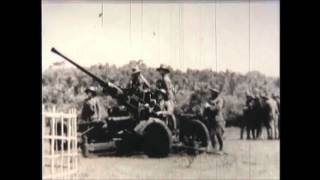 The Battle of Java 1942