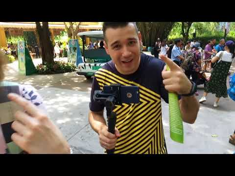 Vlog Mame i Pape. Zoo Chimelong Part 1. China, Guangzhou