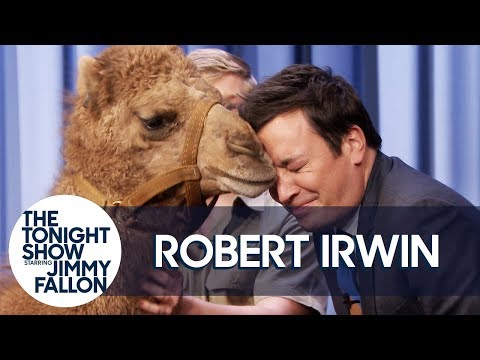 Robert Irwin's Baby Camel Kisses Jimmy on the Lips