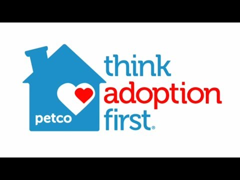 Why You Should Adopt a Pet - Adoption Facts by Petco